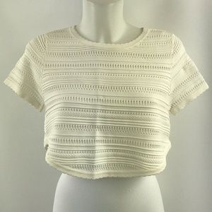 Torn by Ronny Kobo Knit Crop Top Size Small